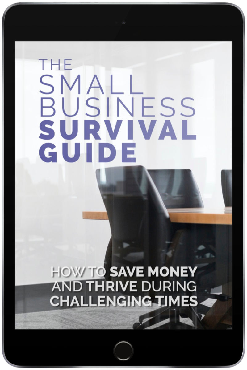 small business survival guide e-book
